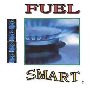 Fuel Smart Electronic System